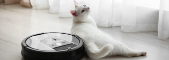 modern robotic vacuum nad cat